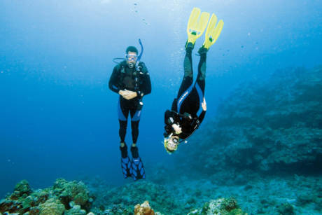 PADI Speciality Courses - Cham Island Diving Center in Hoi An, Vietnam