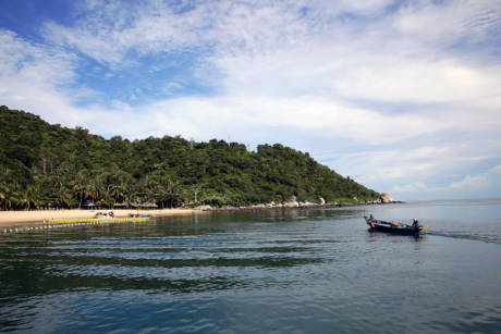 Scuba Diving with Cham Island Diving Center in Hoi An, Vietnam - Bai Chong