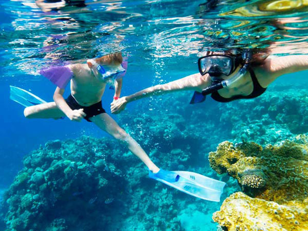 Blue Coral Diving - Cham Island Diving Center is your place for a private Snorkeling Trip in Vietnam